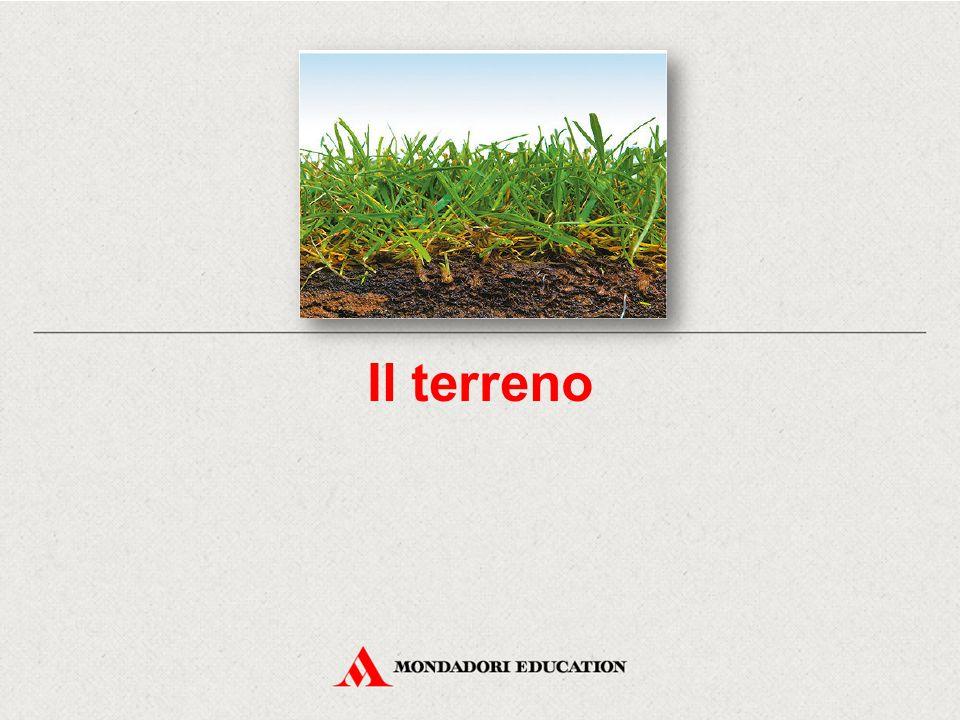 Il terreno ha un aspetto fisico, un aspetto chimico e un aspetto biologico.