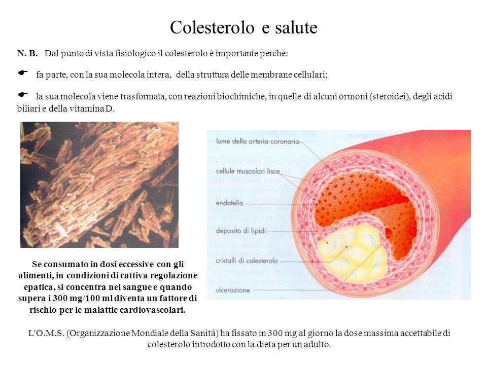 Colesterolo e salute N. B. Dal punto di vista fisiologico il colesterolo è importante perché:  fa parte, con la sua molecola intera, della struttura