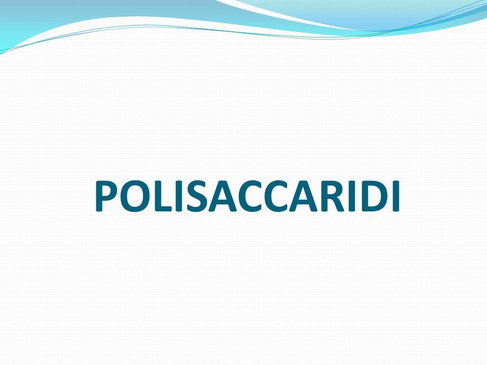 POLISACCARIDI