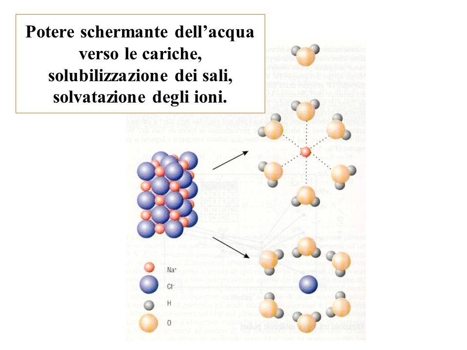 Potere schermante dell'acqua verso le cariche, solubilizzazione dei sali, solvatazione degli ioni.