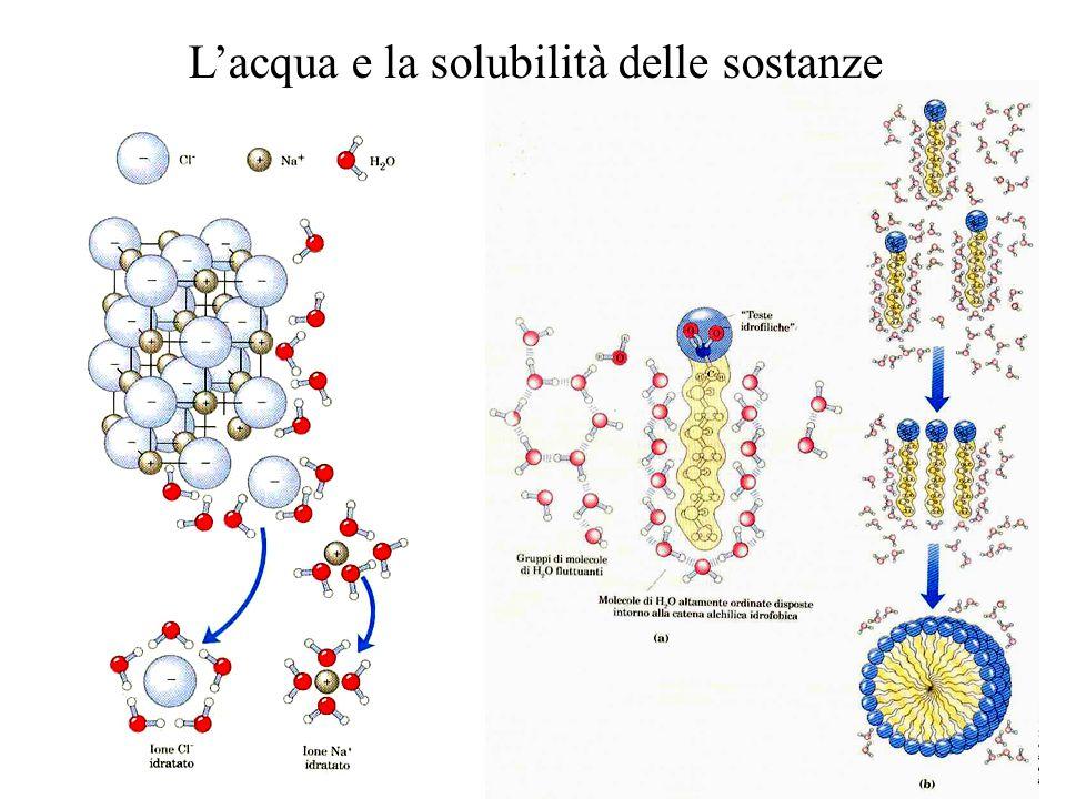 L'acqua e la solubilità delle sostanze