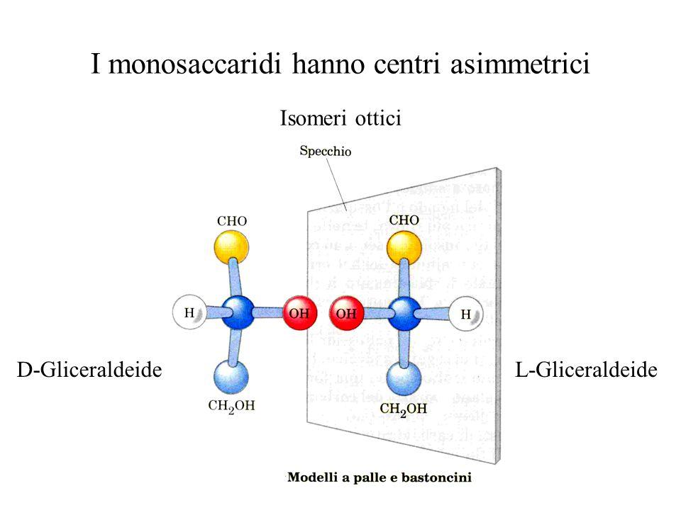 I monosaccaridi hanno centri asimmetrici D-Gliceraldeide Isomeri ottici L-Gliceraldeide