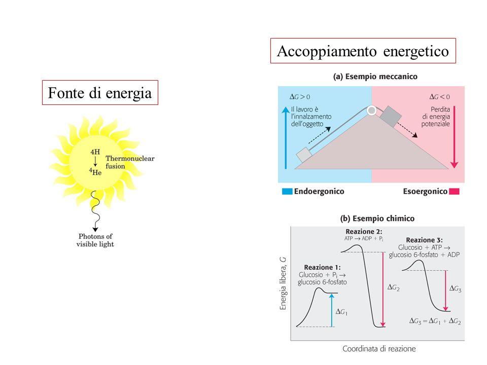Fonte di energia Accoppiamento energetico