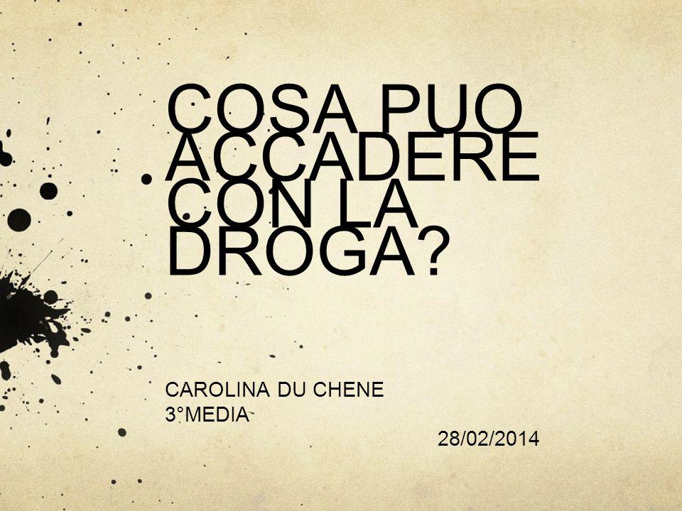 COSA PUO ACCADERE CON LA DROGA? CAROLINA DU CHENE 3°MEDIA 28/02/2014