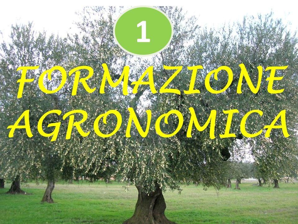 FORMAZIONE AGRONOMICA 1