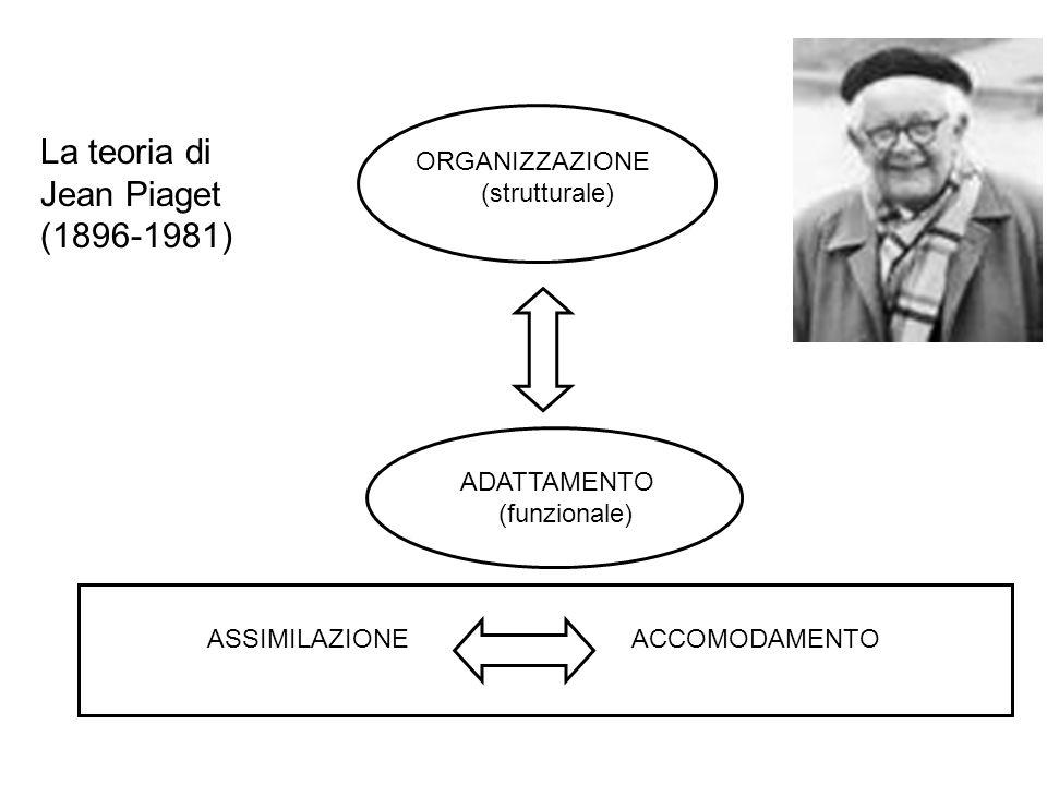 La teoria di Jean Piaget (1896-1981) ADATTAMENTO (funzionale) ASSIMILAZIONE ACCOMODAMENTO ORGANIZZAZIONE (strutturale)