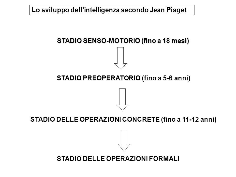 Lo sviluppo dell'intelligenza secondo Jean Piaget STADIO SENSO-MOTORIO (fino a 18 mesi) STADIO SENSO-MOTORIO (fino a 18 mesi) STADIO PREOPERATORIO (fino a 5-6 anni) STADIO DELLE OPERAZIONI CONCRETE (fino a 11-12 anni) STADIO DELLE OPERAZIONI FORMALI