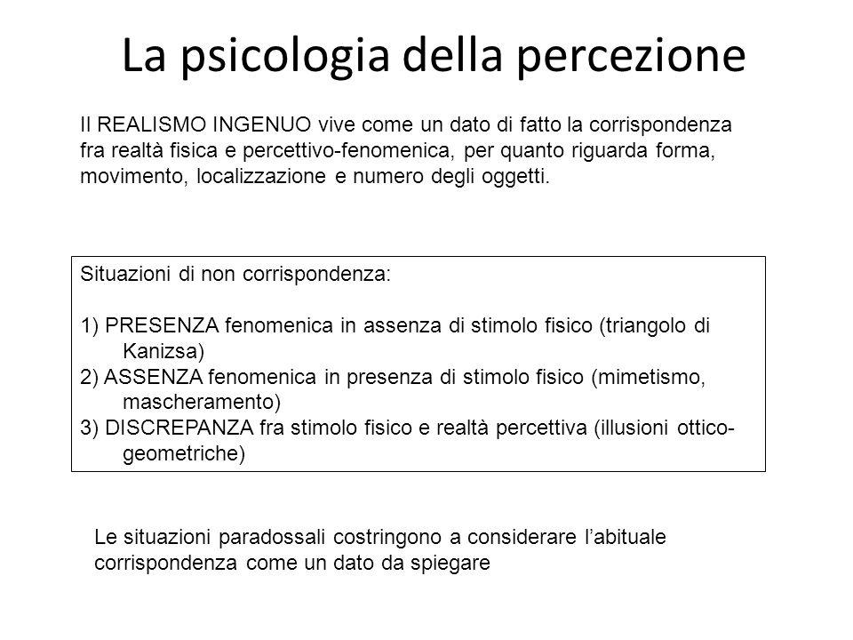 La psicologia della percezione Il REALISMO INGENUO vive come un dato di fatto la corrispondenza fra realtà fisica e percettivo-fenomenica, per quanto riguarda forma, movimento, localizzazione e numero degli oggetti.