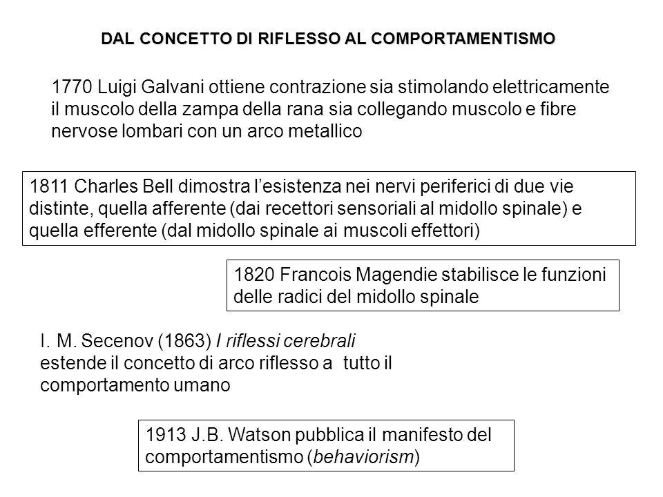 1811 Charles Bell dimostra l'esistenza nei nervi periferici di due vie distinte, quella afferente (dai recettori sensoriali al midollo spinale) e quella efferente (dal midollo spinale ai muscoli effettori) I..M.