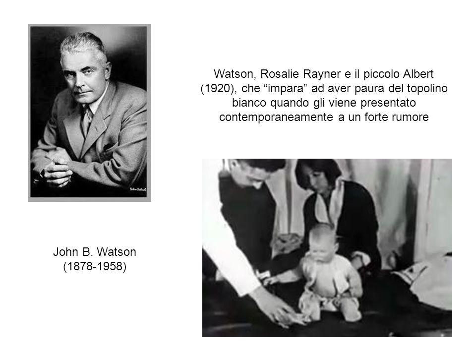 """John B. Watson (1878-1958) Watson, Rosalie Rayner e il piccolo Albert (1920), che """"impara"""" ad aver paura del topolino bianco quando gli viene presenta"""