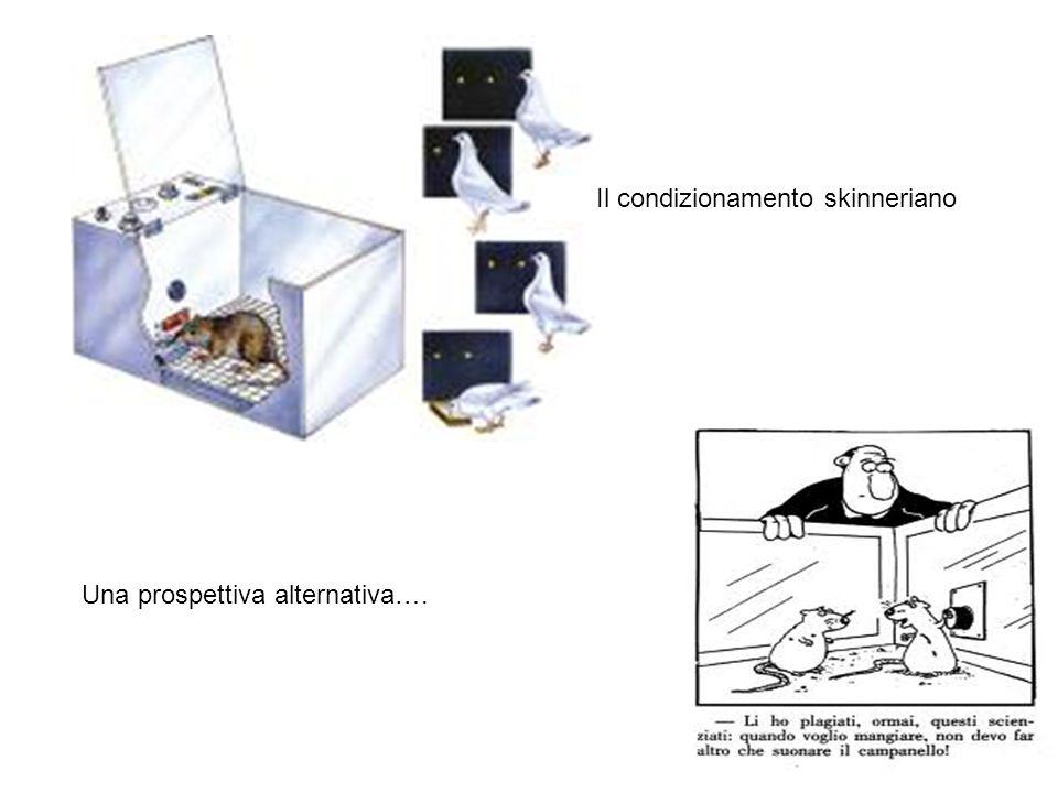 Una prospettiva alternativa…. Il condizionamento skinneriano