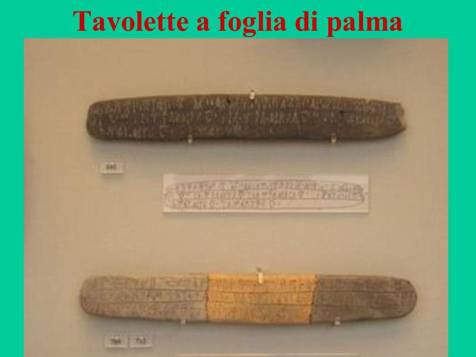 53 Tavolette a foglia di palma