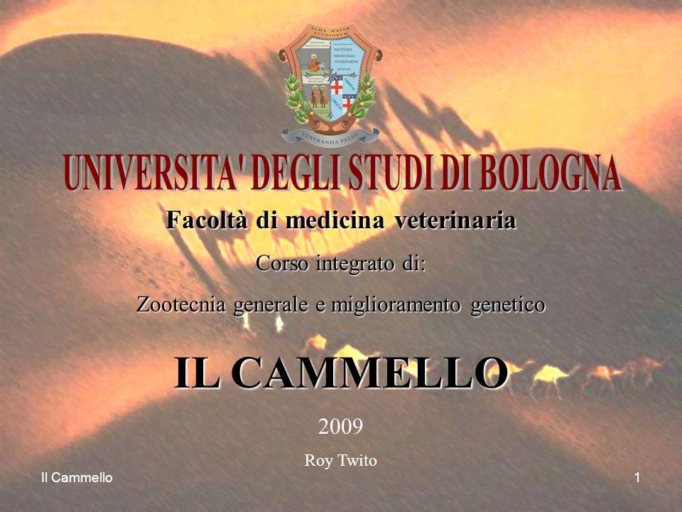 Il Cammello1 Facoltà di medicina veterinaria Corso integrato di: Zootecnia generale e miglioramento genetico IL CAMMELLO 2009 Roy Twito