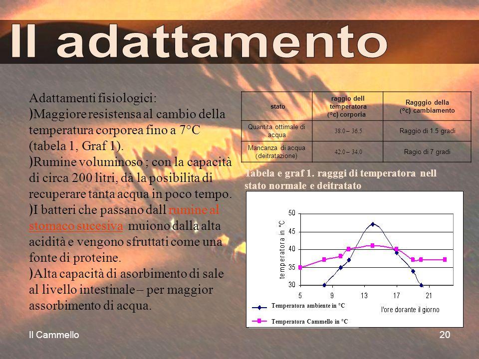 Il Cammello20 Adattamenti fisiologici: ﴿Maggiore resistensa al cambio della temperatura corporea fino a 7°C (tabela 1, Graf 1). ﴿Rumine voluminoso ; c