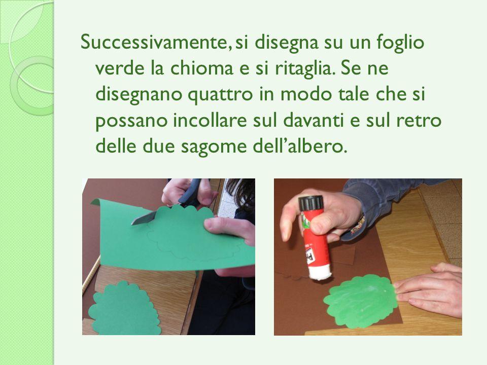 Successivamente, si disegna su un foglio verde la chioma e si ritaglia. Se ne disegnano quattro in modo tale che si possano incollare sul davanti e su