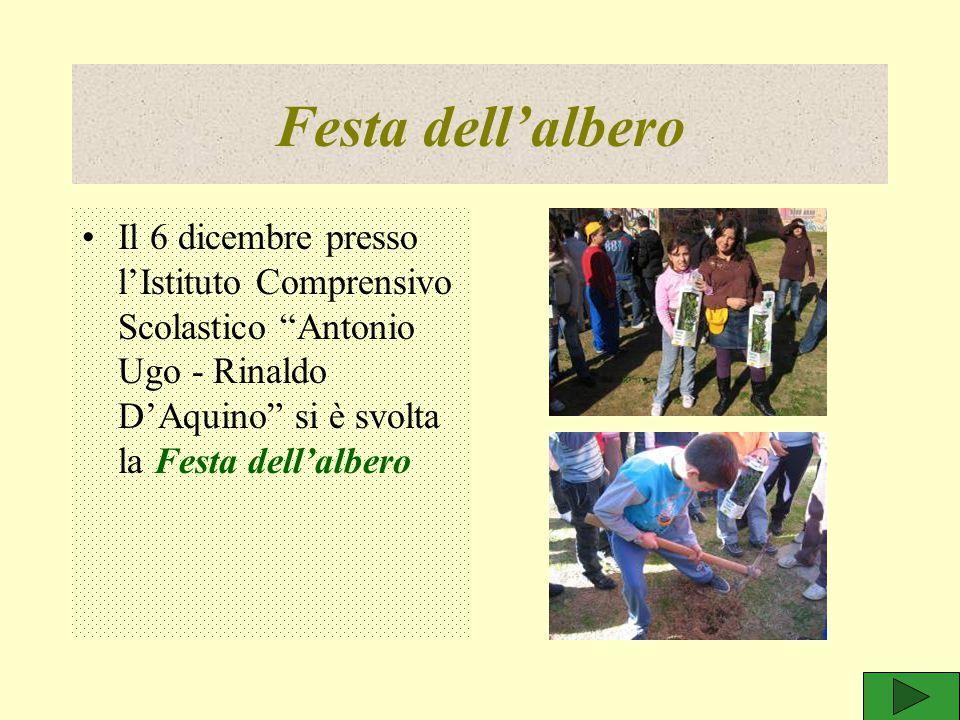 """Festa dell'albero Il 6 dicembre presso l'Istituto Comprensivo Scolastico """"Antonio Ugo - Rinaldo D'Aquino"""" si è svolta la Festa dell'albero"""