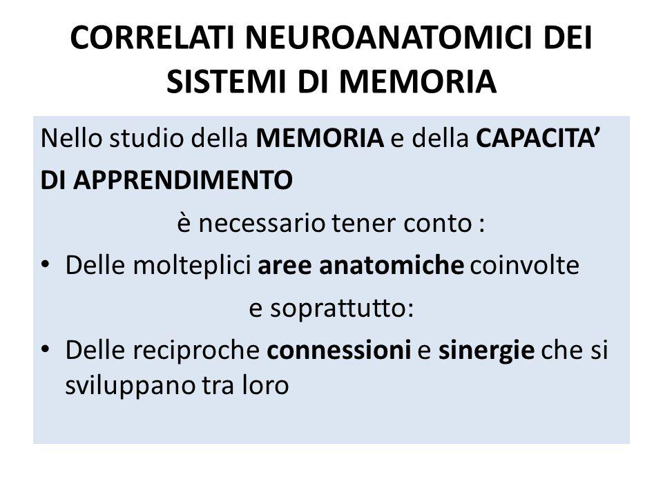 CORRELATI NEUROANATOMICI DEI SISTEMI DI MEMORIA Nello studio della MEMORIA e della CAPACITA' DI APPRENDIMENTO è necessario tener conto : Delle moltepl