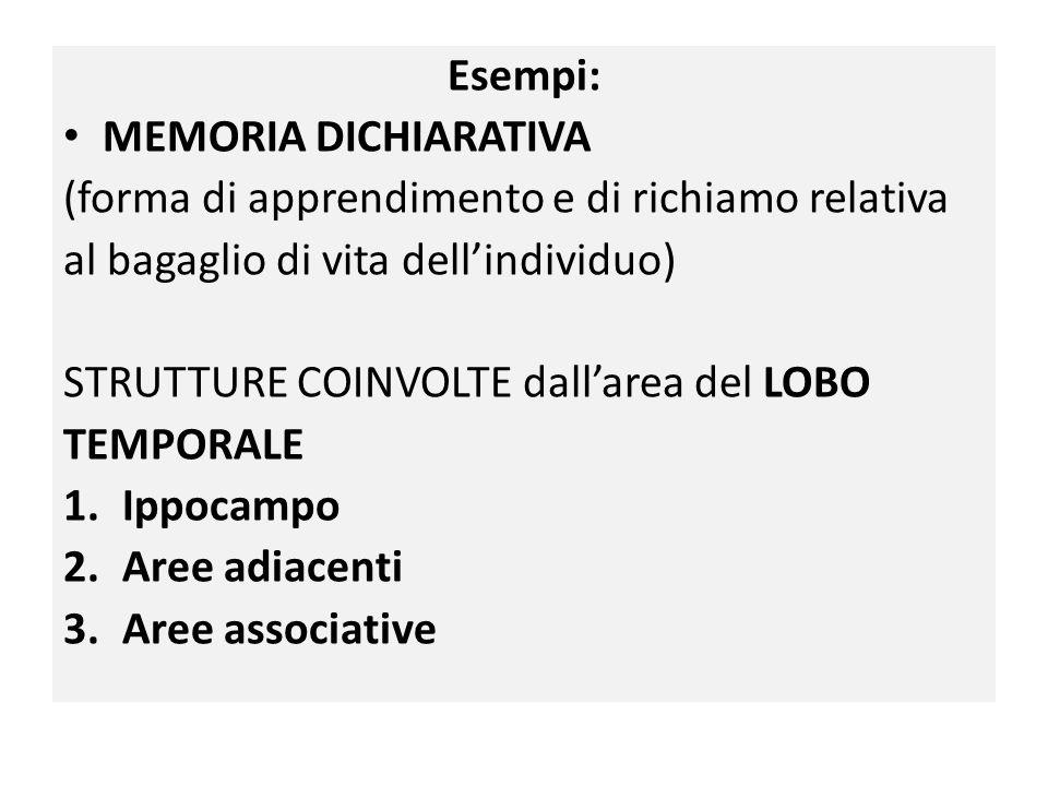 Esempi: MEMORIA DICHIARATIVA (forma di apprendimento e di richiamo relativa al bagaglio di vita dell'individuo) STRUTTURE COINVOLTE dall'area del LOBO