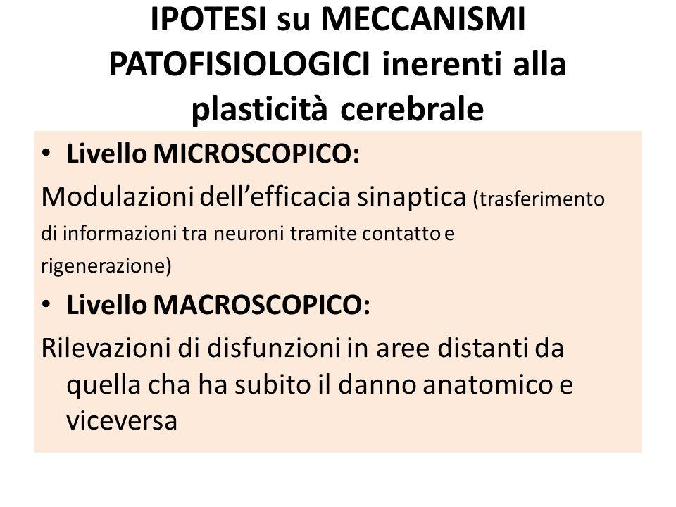 IPOTESI su MECCANISMI PATOFISIOLOGICI inerenti alla plasticità cerebrale Livello MICROSCOPICO: Modulazioni dell'efficacia sinaptica (trasferimento di