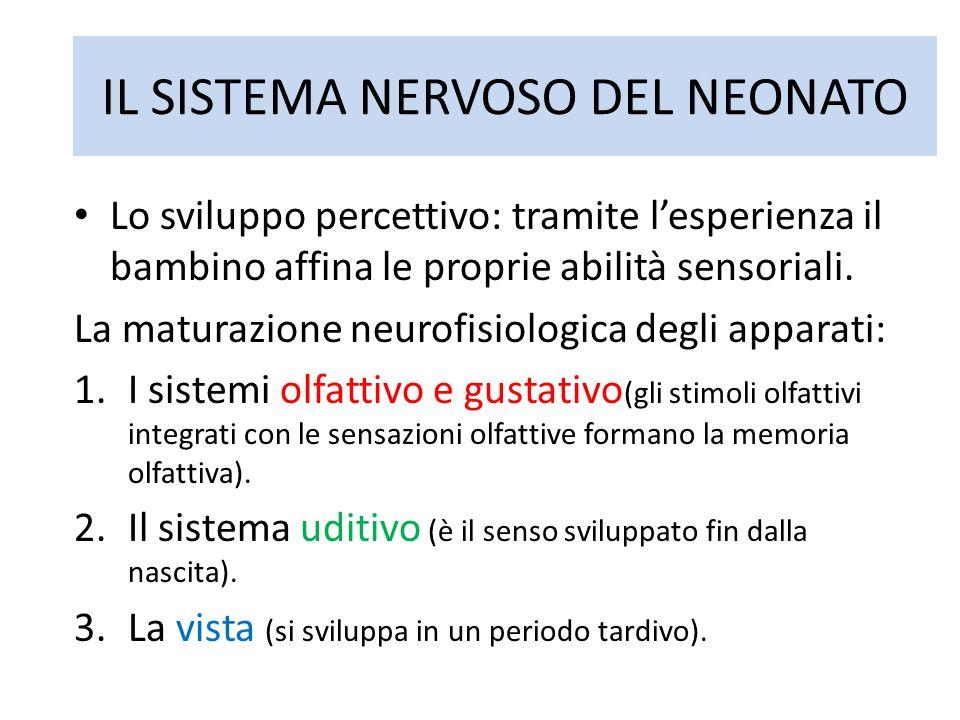 IL SISTEMA NERVOSO DEL NEONATO Lo sviluppo percettivo: tramite l'esperienza il bambino affina le proprie abilità sensoriali. La maturazione neurofisio