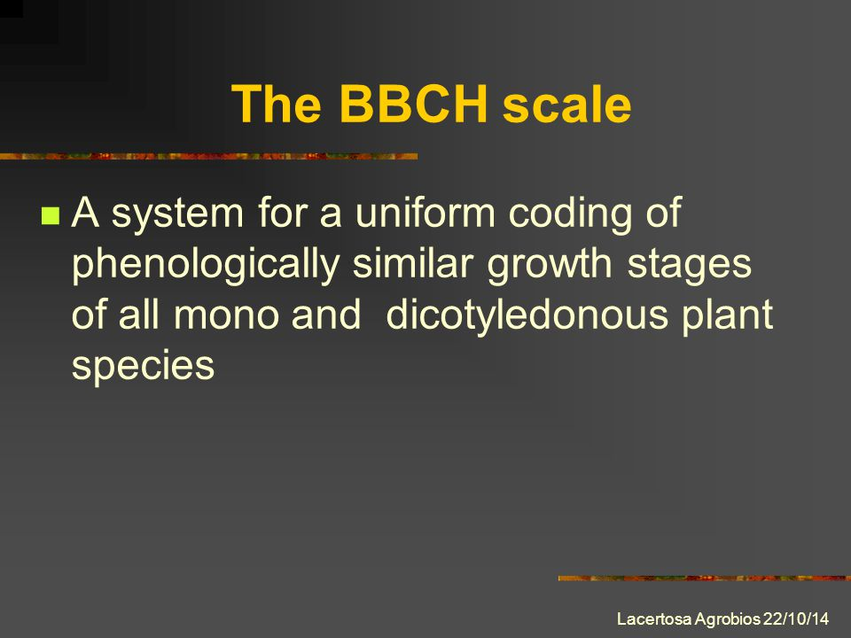 Lacertosa Agrobios 22/10/14 The BBCH scale A system for a uniform coding of phenologically similar growth stages of all mono and dicotyledonous plant species