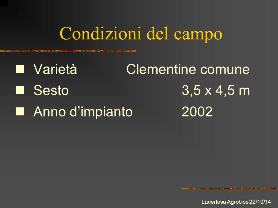 Condizioni del campo VarietàClementine comune Sesto 3,5 x 4,5 m Anno d'impianto2002 Lacertosa Agrobios 22/10/14