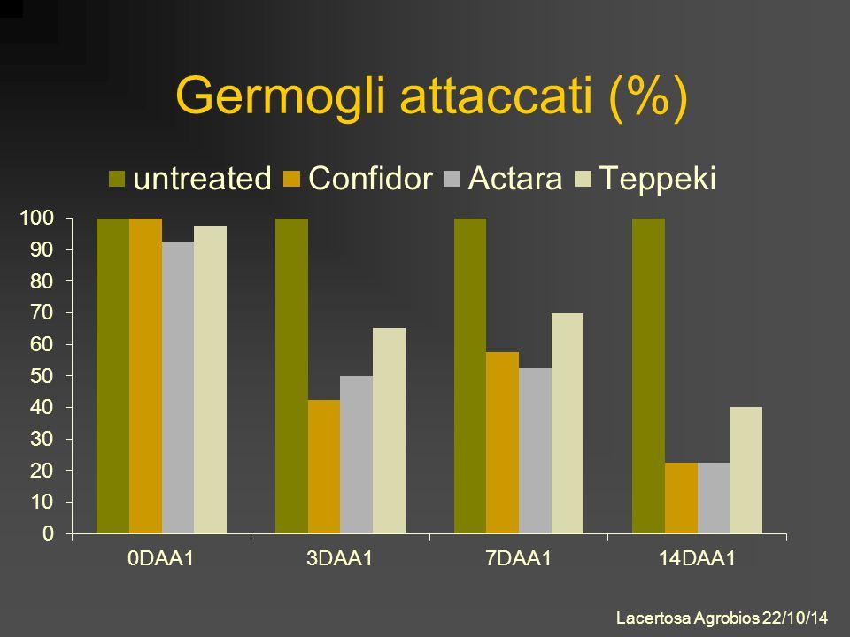 Germogli attaccati (%) Lacertosa Agrobios 22/10/14