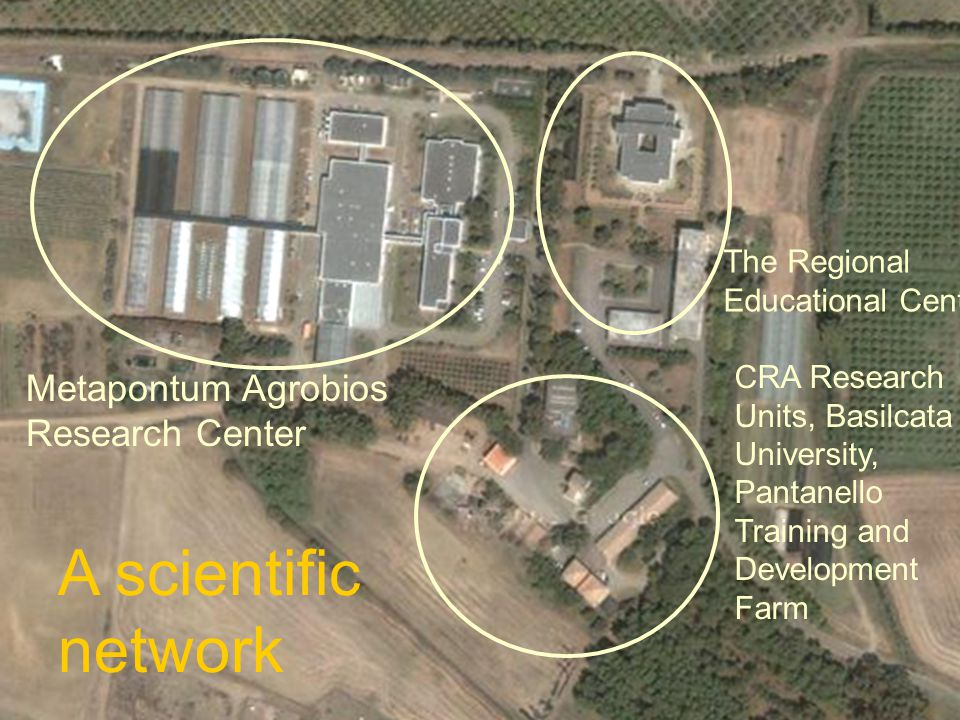 Lacertosa Agrobios 22/10/14 The Regional Educational Center Metapontum Agrobios Research Center A scientific network CRA Research Units, Basilcata University, Pantanello Training and Development Farm