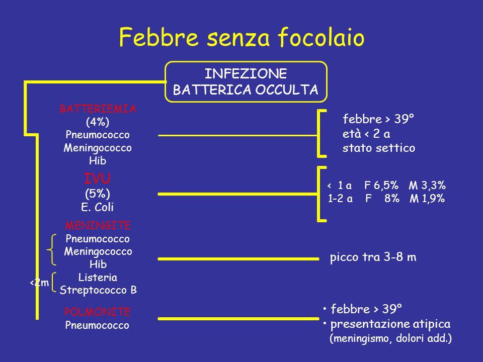 Febbre senza focolaio BATTERIEMIA (4%) Pneumococco Meningococco Hib MENINGITE Pneumococco Meningococco Hib Listeria Streptococco B POLMONITE Pneumococ