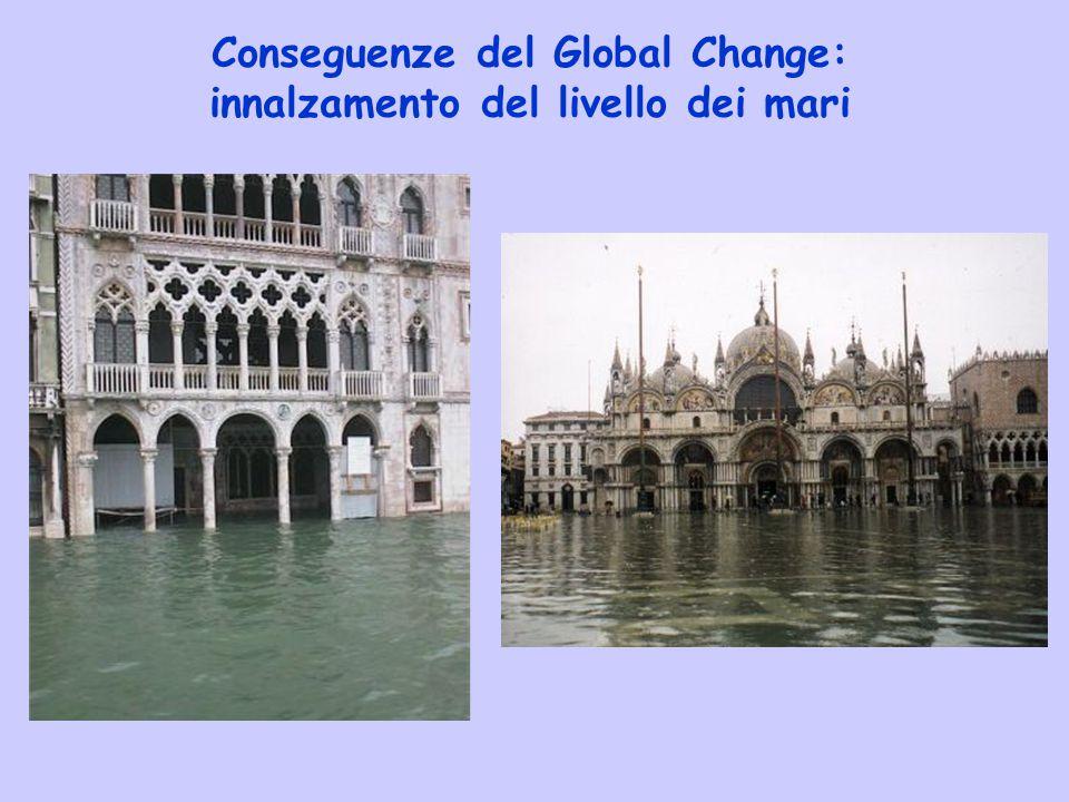 Conseguenze del Global Change: innalzamento del livello dei mari