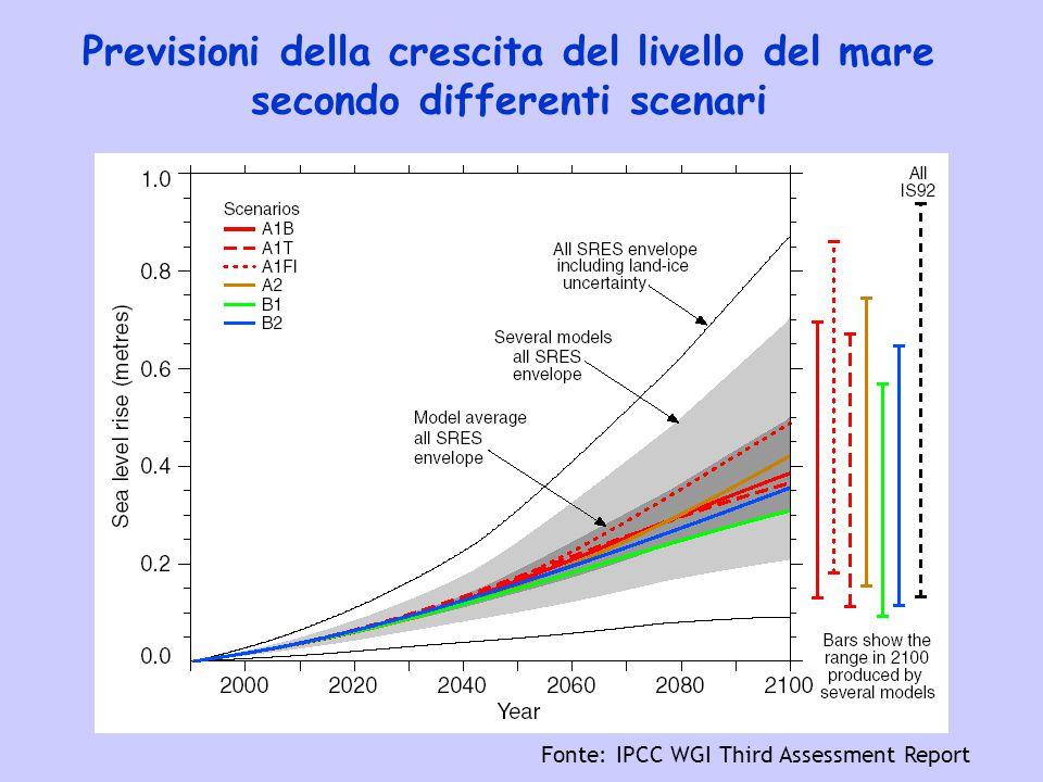 Fonte: IPCC WGI Third Assessment Report Previsioni della crescita del livello del mare secondo differenti scenari