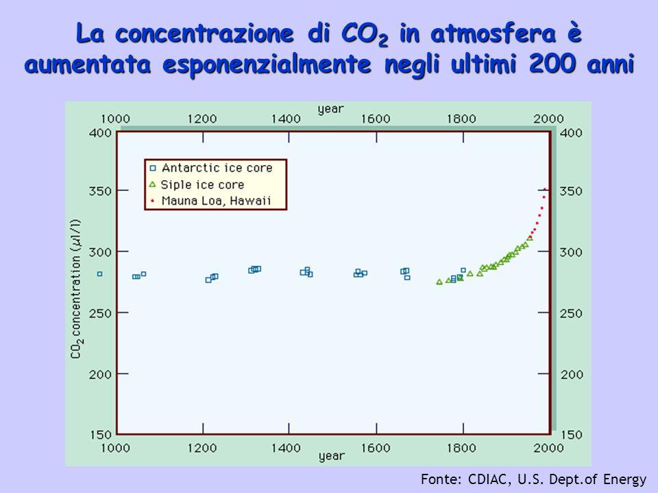 La concentrazione di CO 2 in atmosfera è aumentata esponenzialmente negli ultimi 200 anni Fonte: CDIAC, U.S. Dept.of Energy