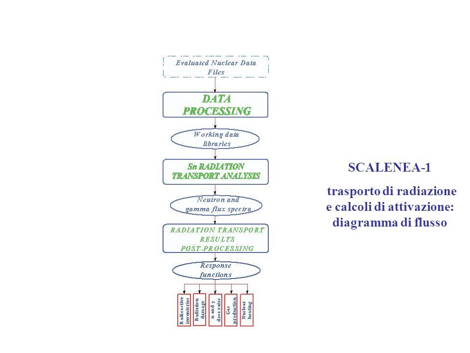 SCALENEA-1 trasporto di radiazione e calcoli di attivazione: diagramma di flusso