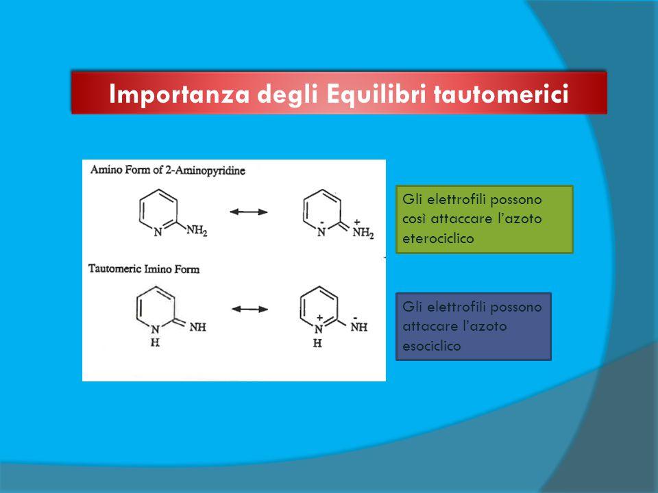 Gli elettrofili possono così attaccare l'azoto eterociclico Gli elettrofili possono attacare l'azoto esociclico Importanza degli Equilibri tautomerici