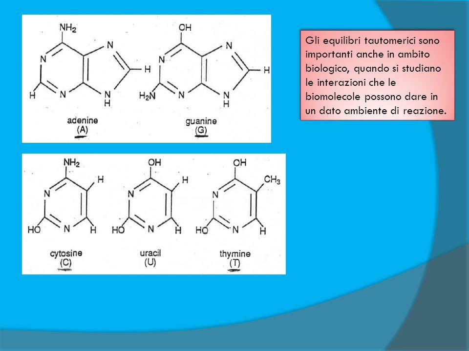 Gli equilibri tautomerici sono importanti anche in ambito biologico, quando si studiano le interazioni che le biomolecole possono dare in un dato ambi