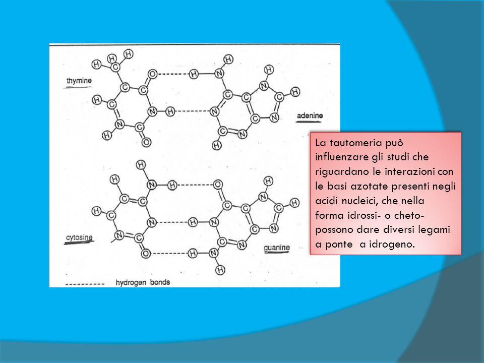 La tautomeria può influenzare gli studi che riguardano le interazioni con le basi azotate presenti negli acidi nucleici, che nella forma idrossi- o ch