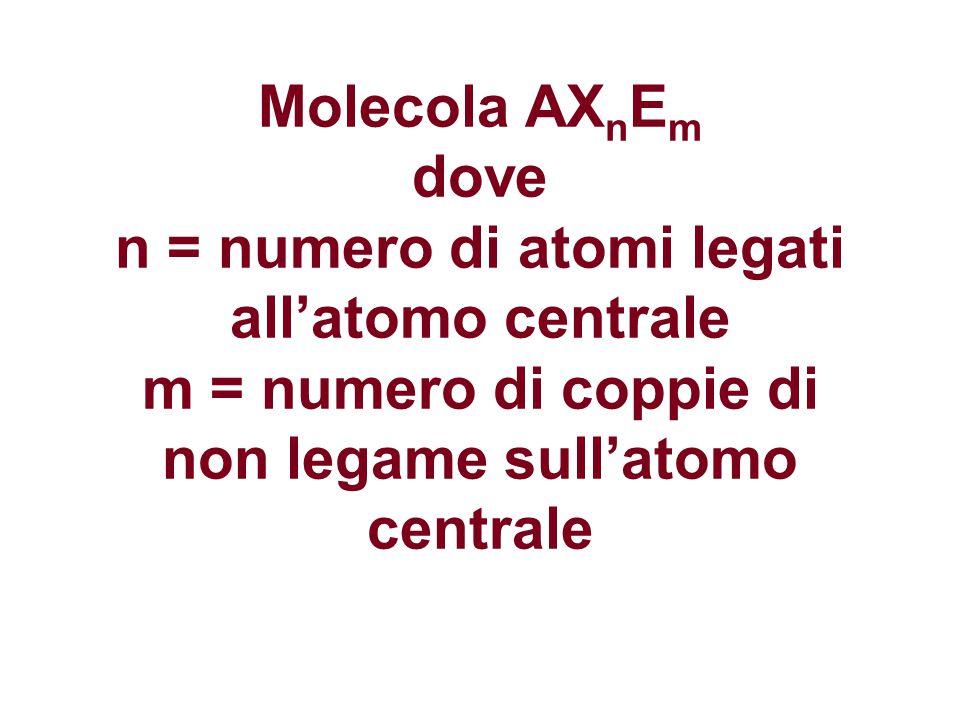 Molecola AX n E m dove n = numero di atomi legati all'atomo centrale m = numero di coppie di non legame sull'atomo centrale