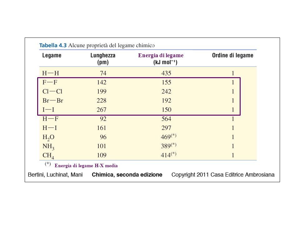 Struttura delle molecole AX n n = numero di atomi legati all'atomo centrale AX 2 AX 3 AX 4 AX 5 AX 6