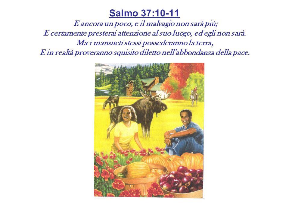 Salmo 37:10-11 E ancora un poco, e il malvagio non sarà più; E certamente presterai attenzione al suo luogo, ed egli non sarà. Ma i mansueti stessi po