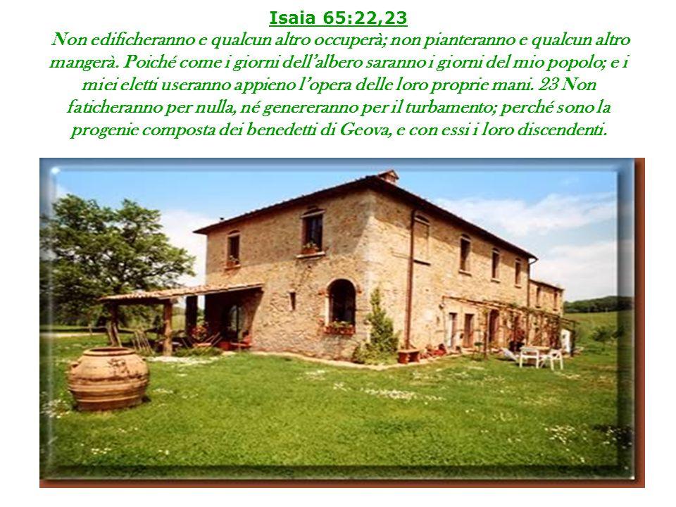 Isaia 65:22,23 Non edificheranno e qualcun altro occuperà; non pianteranno e qualcun altro mangerà. Poiché come i giorni dell'albero saranno i giorni