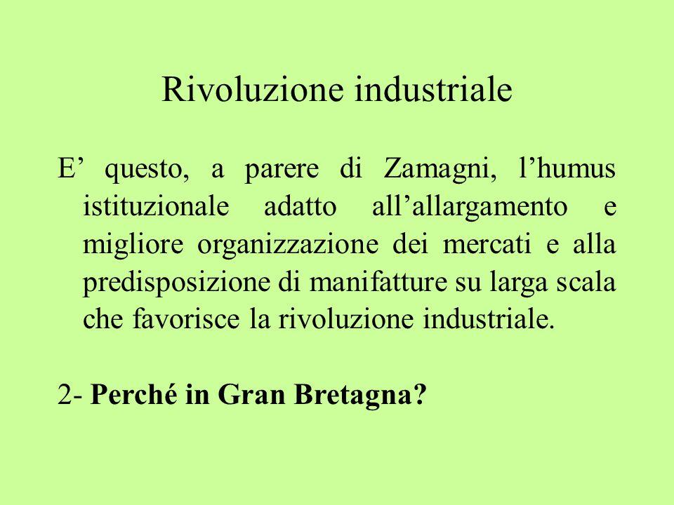 Rivoluzione industriale E' questo, a parere di Zamagni, l'humus istituzionale adatto all'allargamento e migliore organizzazione dei mercati e alla predisposizione di manifatture su larga scala che favorisce la rivoluzione industriale.