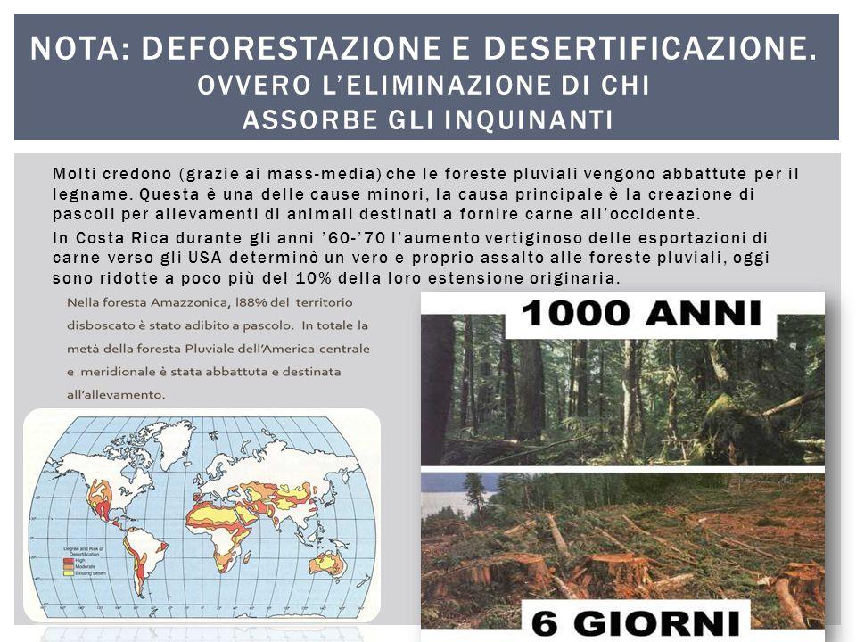Molti credono (grazie ai mass-media) che le foreste pluviali vengono abbattute per il legname. Questa è una delle cause minori, la causa principale è