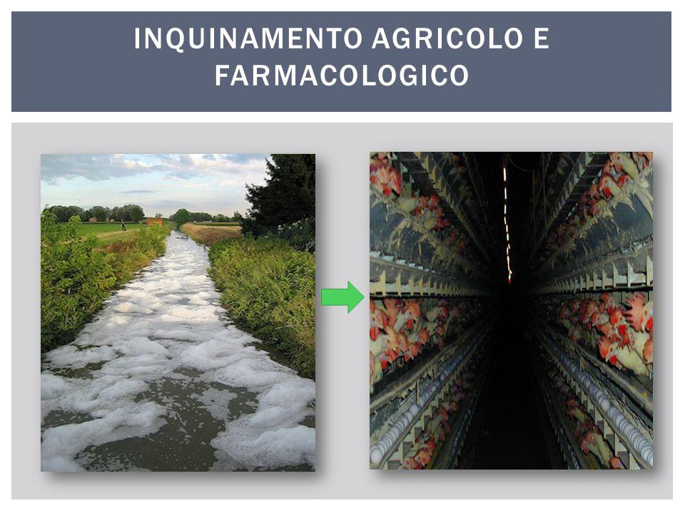 INQUINAMENTO AGRICOLO E FARMACOLOGICO