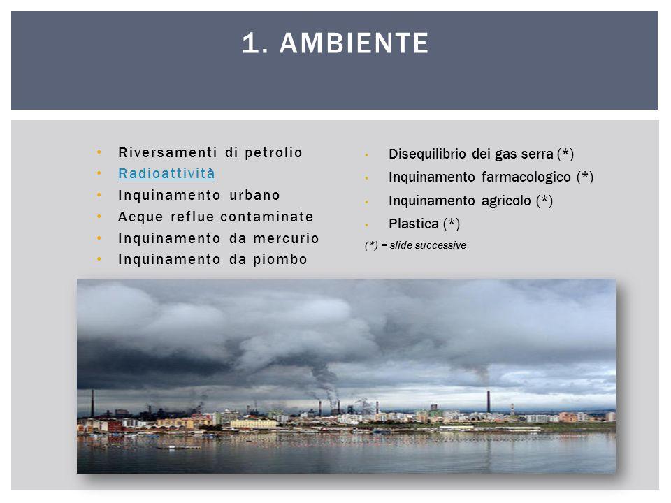 Riversamenti di petrolio Radioattività Inquinamento urbano Acque reflue contaminate Inquinamento da mercurio Inquinamento da piombo 1. AMBIENTE Disequ