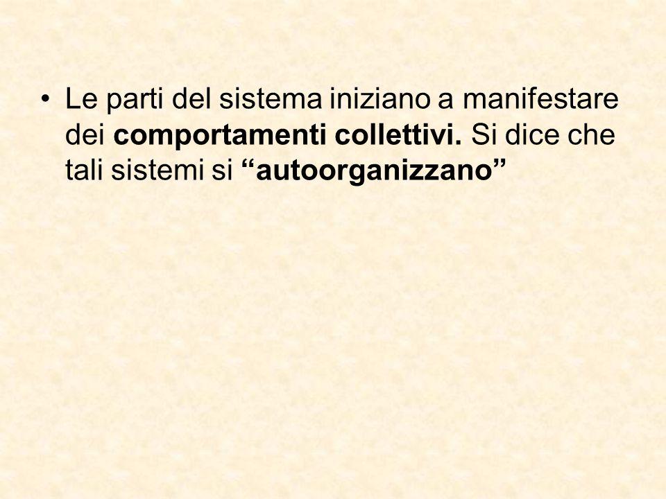 """Le parti del sistema iniziano a manifestare dei comportamenti collettivi. Si dice che tali sistemi si """"autoorganizzano"""""""