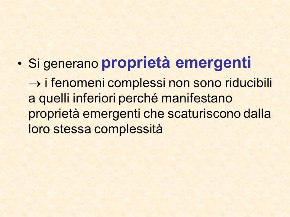 Si generano proprietà emergenti  i fenomeni complessi non sono riducibili a quelli inferiori perché manifestano proprietà emergenti che scaturiscono