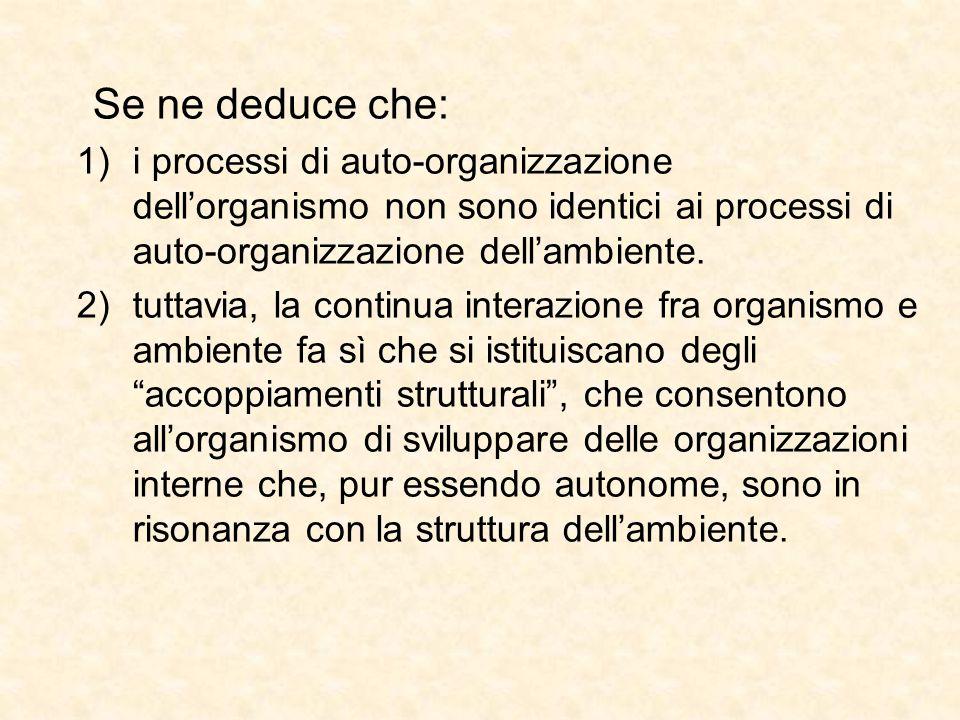 Se ne deduce che: 1)i processi di auto-organizzazione dell'organismo non sono identici ai processi di auto-organizzazione dell'ambiente. 2)tuttavia, l