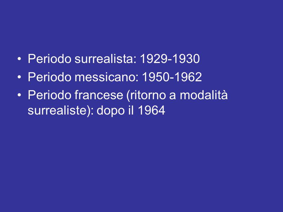 Periodo surrealista: 1929-1930 Periodo messicano: 1950-1962 Periodo francese (ritorno a modalità surrealiste): dopo il 1964