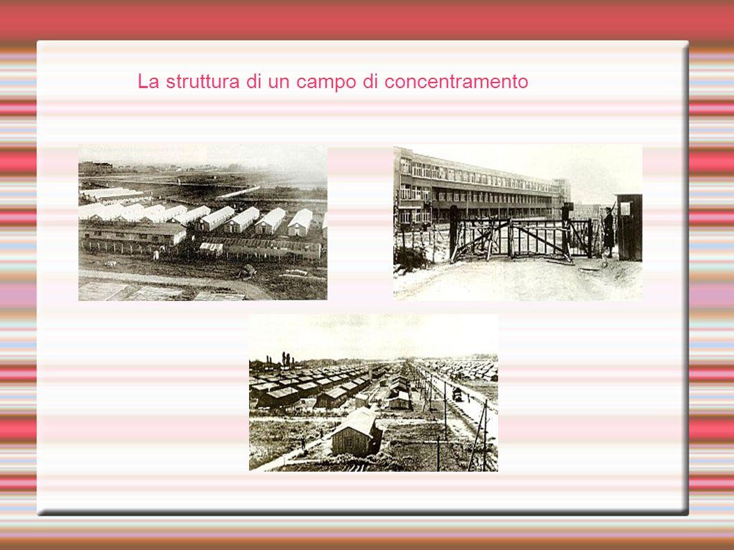 La struttura di un campo di concentramento