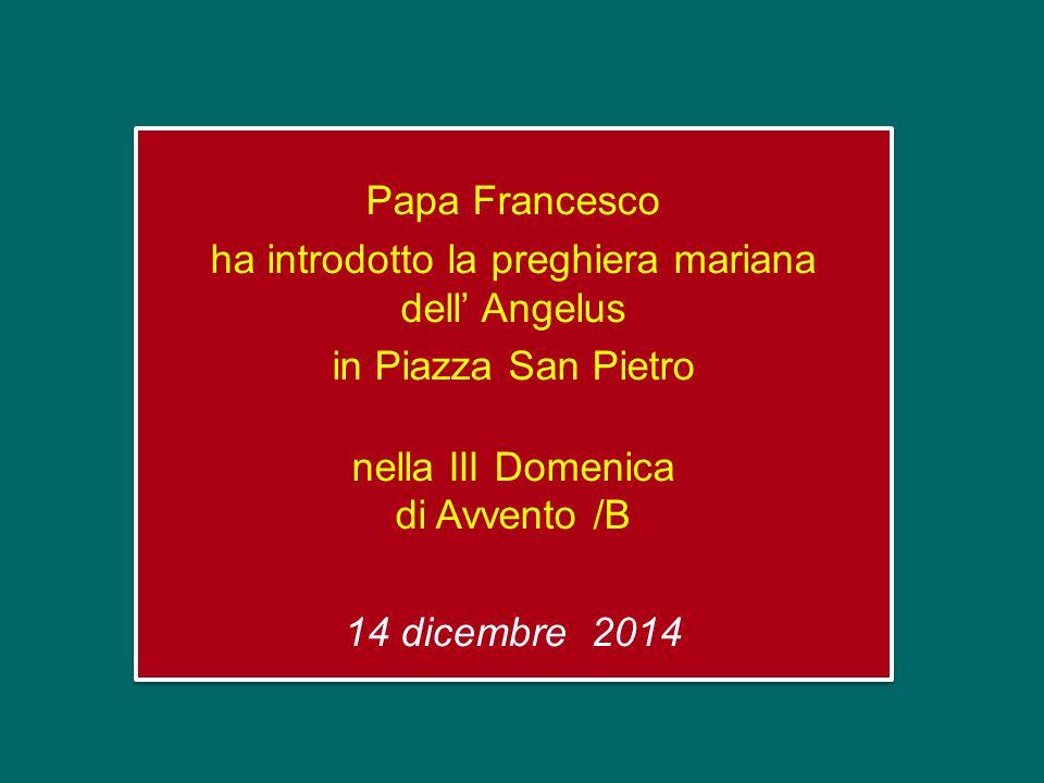 Papa Francesco ha introdotto la preghiera mariana dell' Angelus in Piazza San Pietro nella III Domenica di Avvento /B 14 dicembre 2014 Papa Francesco ha introdotto la preghiera mariana dell' Angelus in Piazza San Pietro nella III Domenica di Avvento /B 14 dicembre 2014